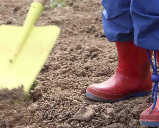 Coltiviamo l'orto